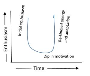 U curve of adaptation